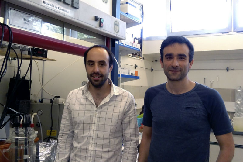 João Gomes y Rui Cardoso Martins son parte del equipo de investigación de la Universidad de Coimbra.