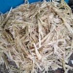 Residuos de la caña de azúcar para producir papel reciclado, películas y geles