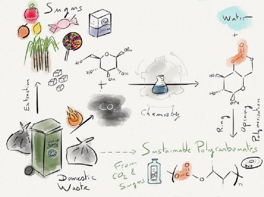 proponen el uso de azúcares y CO2 para producir bioplástico
