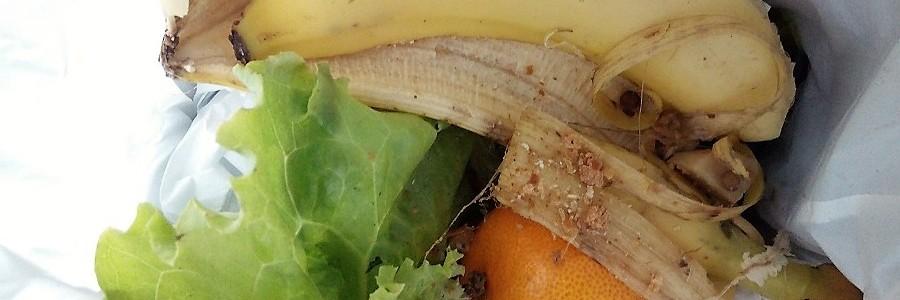Doce propuestas normativas y fiscales contra el desperdicio alimentario en Cataluña