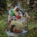 """La recuperación de los envases contenidos en la fracción resto, la """"asignatura pendiente"""" de la gestión de residuos en España"""