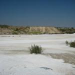 Logran regenerar suelos contaminados con lodos de mármol