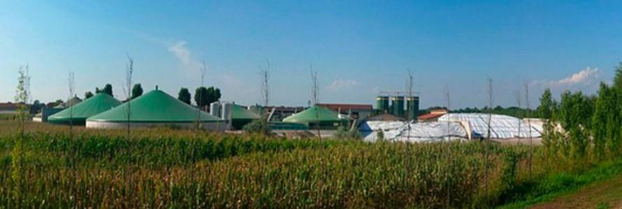 ¿Cómo hacer eficiente la producción de biogás?