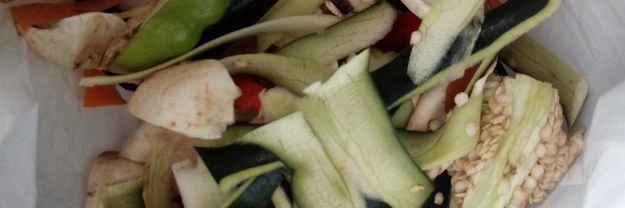 PERCAL: nuevas vías de aprovechamiento de la fracción orgánica de los residuos domésticos