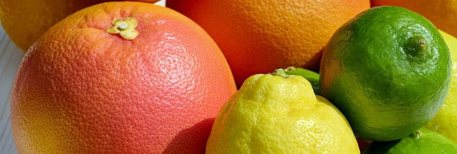Bioplásticos con limoneno y sin bisfenol A