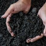 El IRTA y el Consorcio de Residuos del Vallès Oriental colaboran para mejorar la calidad del compost obtenido a partir de residuos