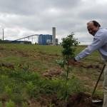 Sogama culmina la revegetación de su complejo industrial