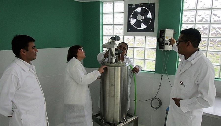 Ainia pone en marcha una planta de biogás en Perú