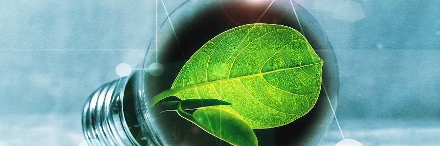 El Gobierno Vasco destinará 675.000 euros a proyectos de ecoinnovación
