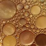 Proyecto ReGrow, recuperación de balsas abandonadas de residuos de aceite