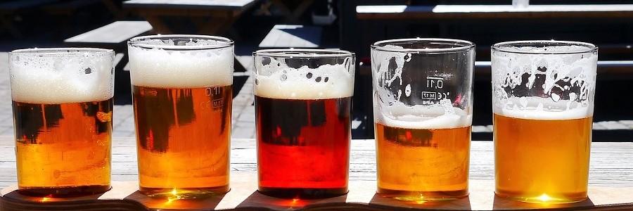 Proponen el uso de residuos de la industria cervecera como aislantes en tejados verdes