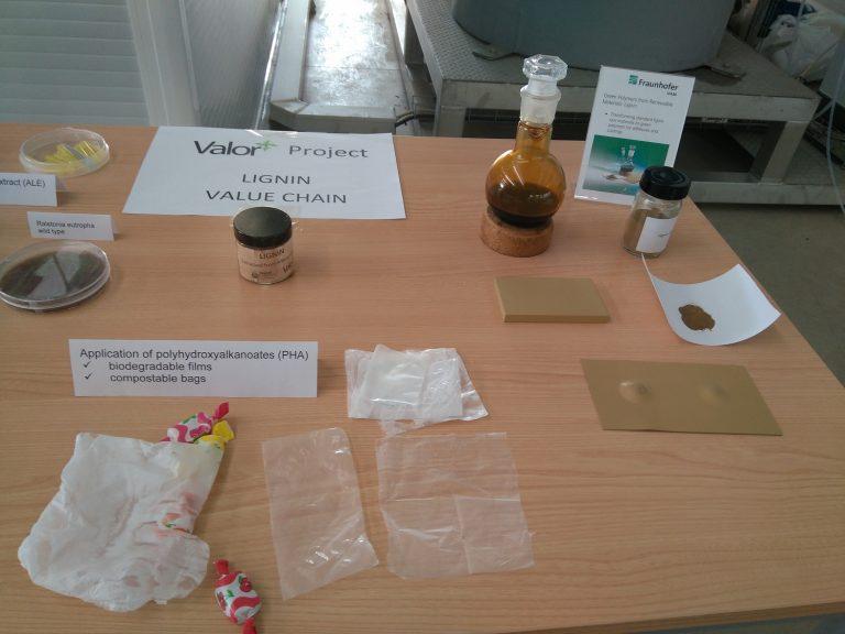 Productos obtenidos a partir de biomasa. Algunos de los bioproductos derivados de los residuos agrícolas. Imagen cedida por ASEBIO