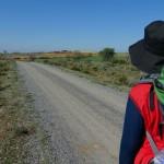 Camino del Reciclaje recicla más de 55.700 kilos de envases domésticos en la Ruta Jacobea por Castilla y León