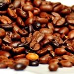 Investigadores mexicanos obtienen biocombustible sólido a partir de residuos de café