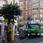 Aspectos ambientales de la nueva Ley de Contratos del sector público