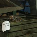 Asegre crea el primer clasificador online de residuos en español