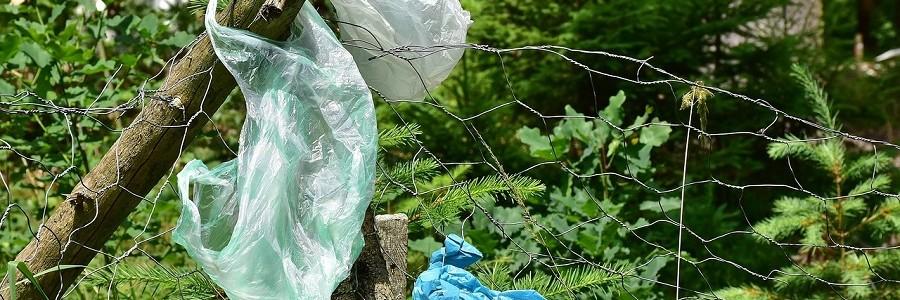 ¿Qué tipo de residuos se abandonan en el campo?
