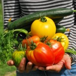 Cómo reducir los residuos mediante un reparto de excedentes alimentarios más eficiente