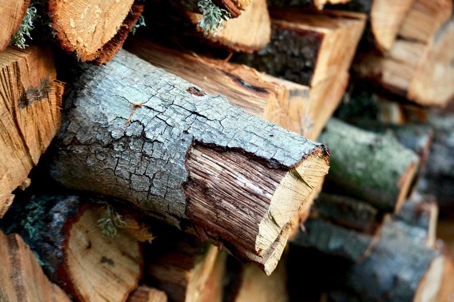España puede abastecerse de energía durante 28 días gracias a la biomasa