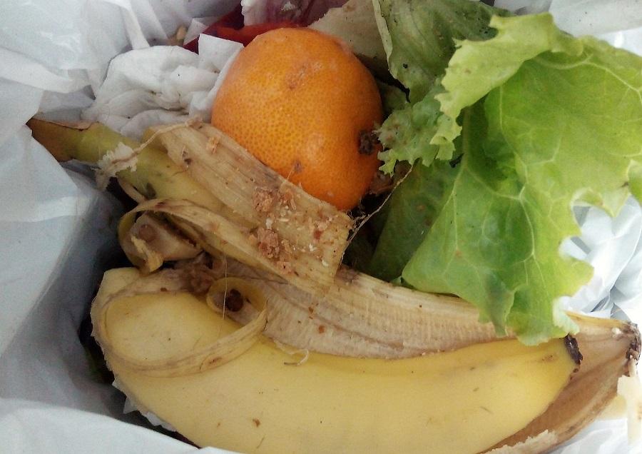 Investigan cómo evaluar el olor de los residuos