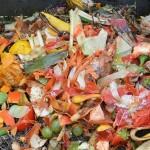 La presencia de PCB en suelos agrícolas fertilizados con residuos orgánicos no implica riesgos para la salud