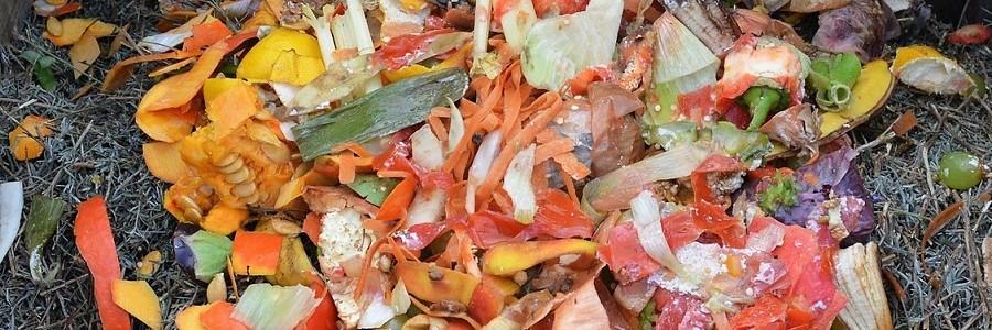 Navantia y Econward desarrollarán nuevas plantas de tratamiento de residuos orgánicos