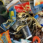 Proyecto de sensibilización contra el abandono de residuos en el mar