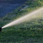 Arona utilizará agua depurada en el baldeo de calles y el riego de jardines