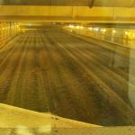 Ecologistas denuncian la ley valenciana que permite el uso agrícola de material bioestabilizado procedente de residuos mezclados