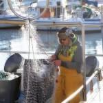 Recoger 200 toneladas de residuos marinos, objetivo del sector pesquero español