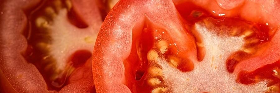 Bioplástico a partir de residuos de tomate para recubrir el interior de latas de conservas