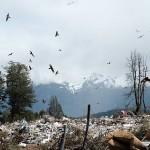 Analizan el impacto de los vertederos en los ecosistemas