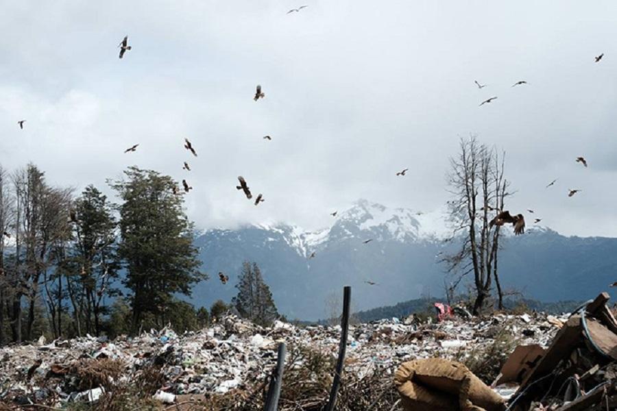Los vertederos tienen impactos sobre los ecosistemas