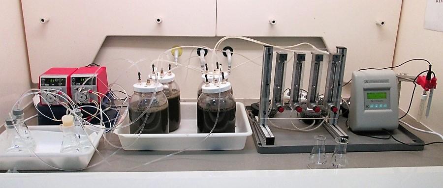 Una investigación propone aprovechar el gas amoniaco como fertilizante nitrogenado