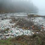 Propuestas de las organizaciones ecologistas contra la contaminación por plásticos