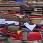 La industria papelera europea insiste en que la recogida separada del papel es clave para el reciclaje