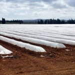 Andalucía pondrá en marcha un sistema de responsabilidad ampliada del productor de plásticos agrícolas