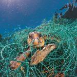 National Geographic lidera una iniciativa global contra el uso abusivo del plástico