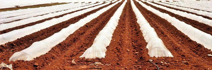 Junta de Andalucía y recicladores buscan soluciones a la gestión de residuos plásticos