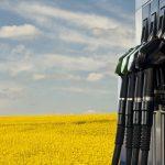 Publicado el Real Decreto que regula el Sistema Nacional de Verificación de la Sostenibilidad de biocarburantes y biolíquidos