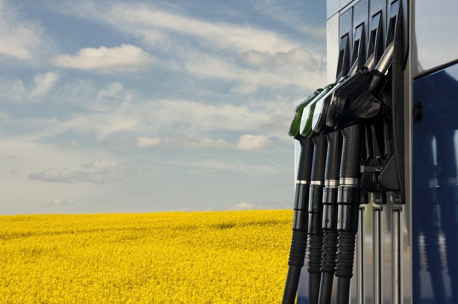 Nuevo Real Decreto que regula el Sistema Nacional de Verificación de la Sostenibilidad de biocarburantes y biolíquidos