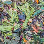 Presentado el proyecto Res2Valhum para el reciclaje de la materia orgánica