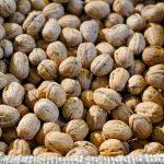 El proyecto 'Lurrekolore' aprovechará las cáscaras de nueces para obtener tintes naturales para la industria textil