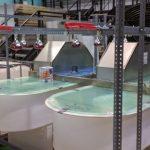 Bacterias para recuperar nutrientes y energía en aguas residuales domésticas
