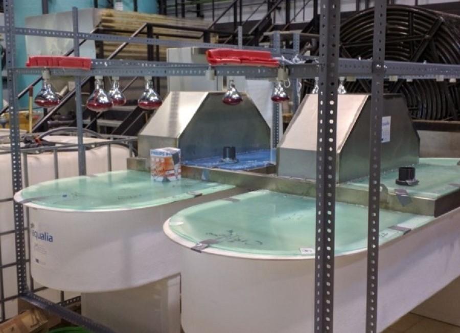 bacterias para recuperar energía y nutrientes de las aguas residuales