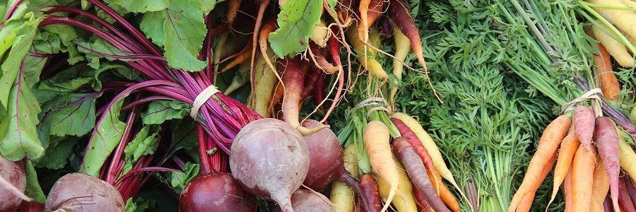 Residuos de zanahoria y remolacha como materiales de construcción sostenibles