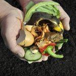 Avanza la recogida selectiva de materia orgánica en la provincia de Alicante