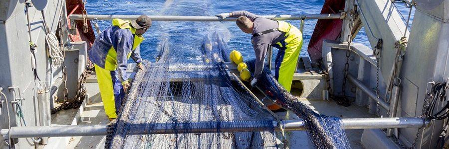 El proyecto RepescaPlas recupera más de 800 kg de residuos marinos, la mayoría plásticos