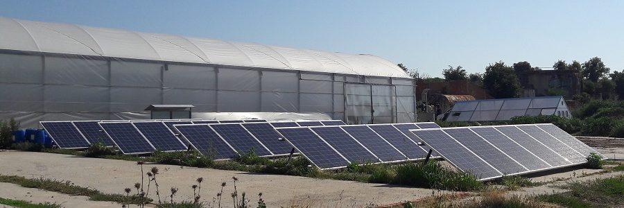 Energía solar fotovoltaica para tratar purines y reducir su volumen