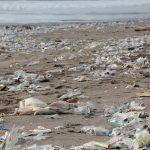 Una plataforma global para luchar contra la contaminación por plásticos